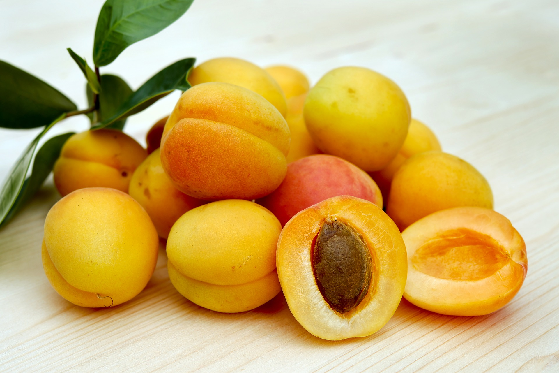 Apricots toxic