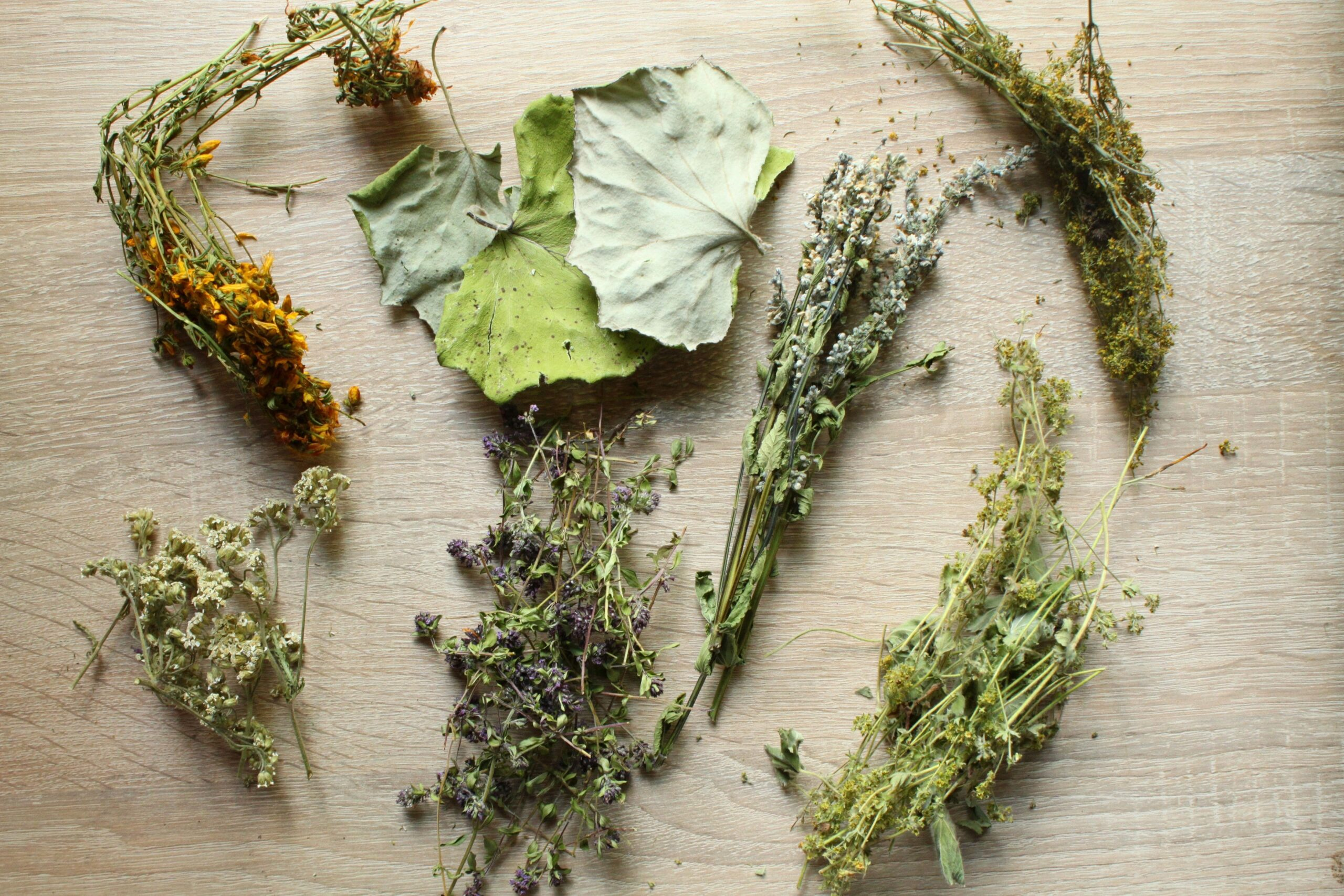 Dried herbs cooking tips