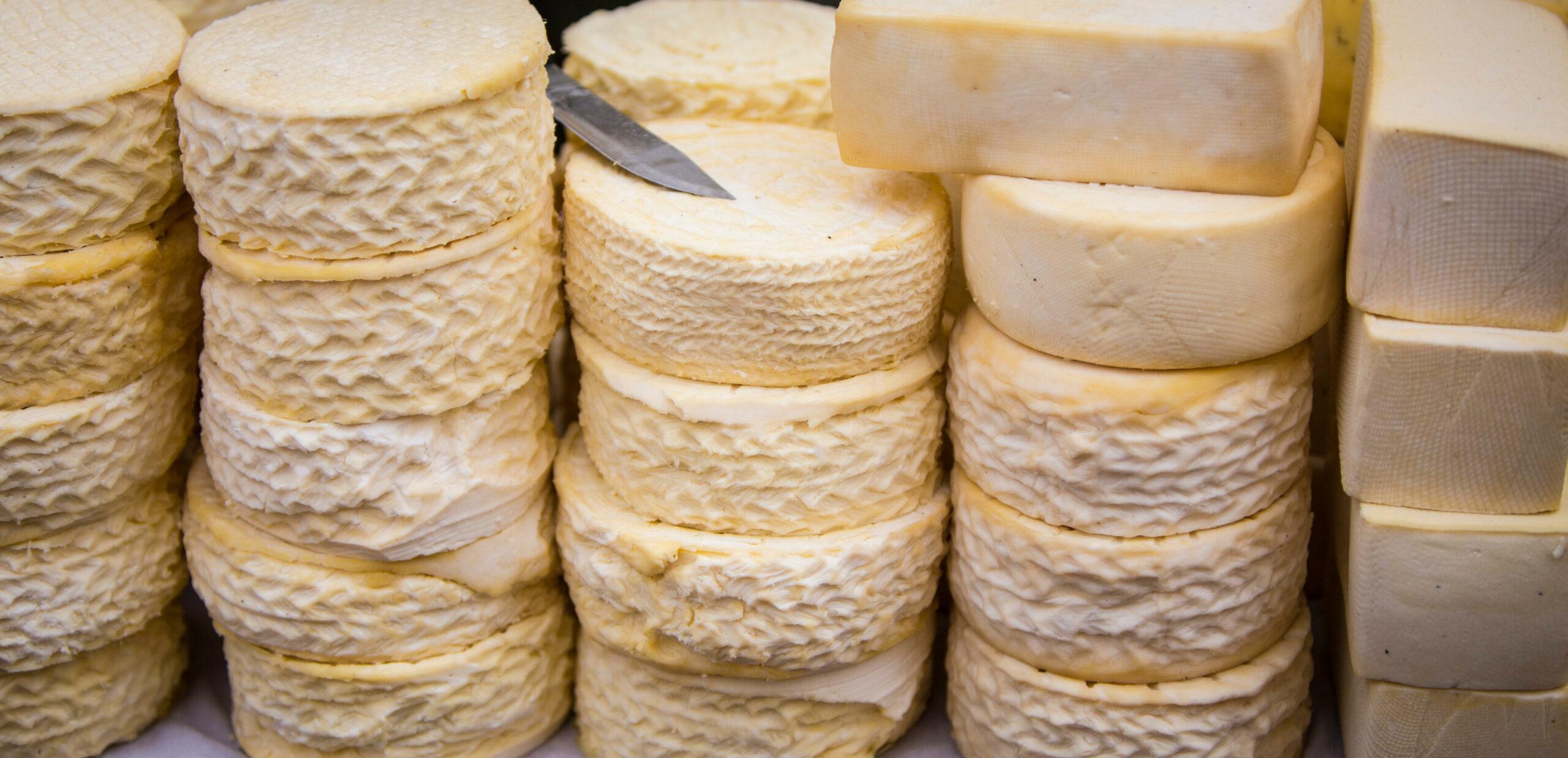 Alpaca cheese