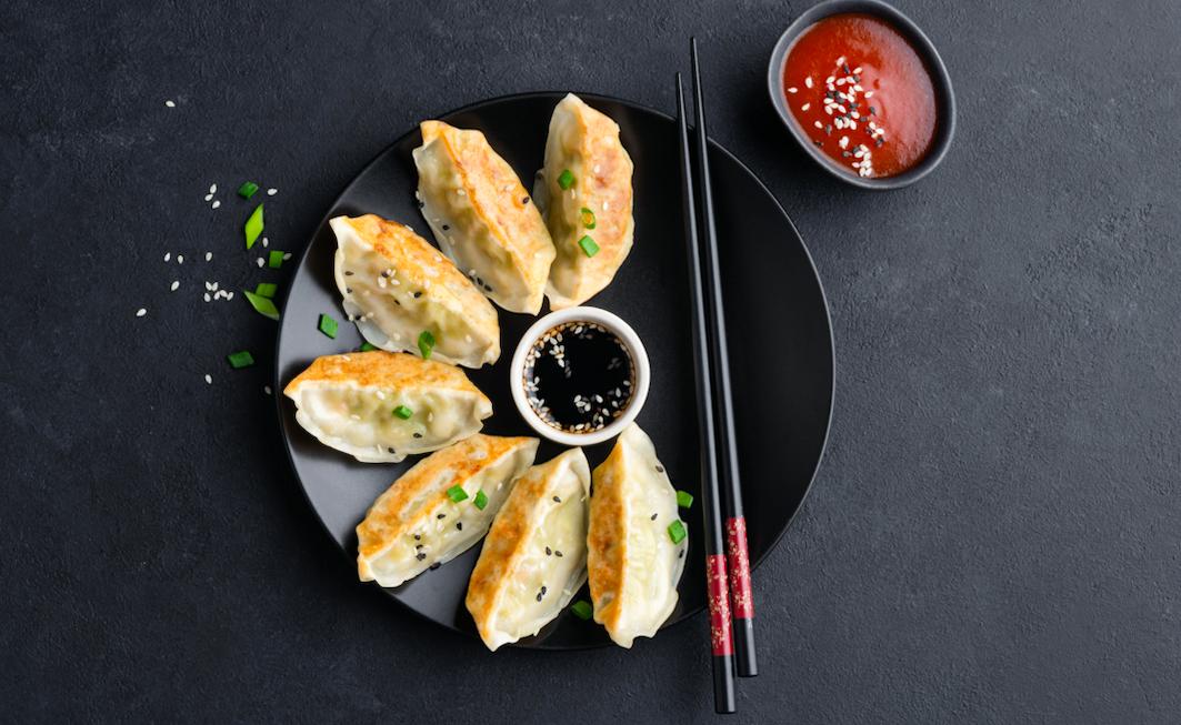 Gyoza best dumplings