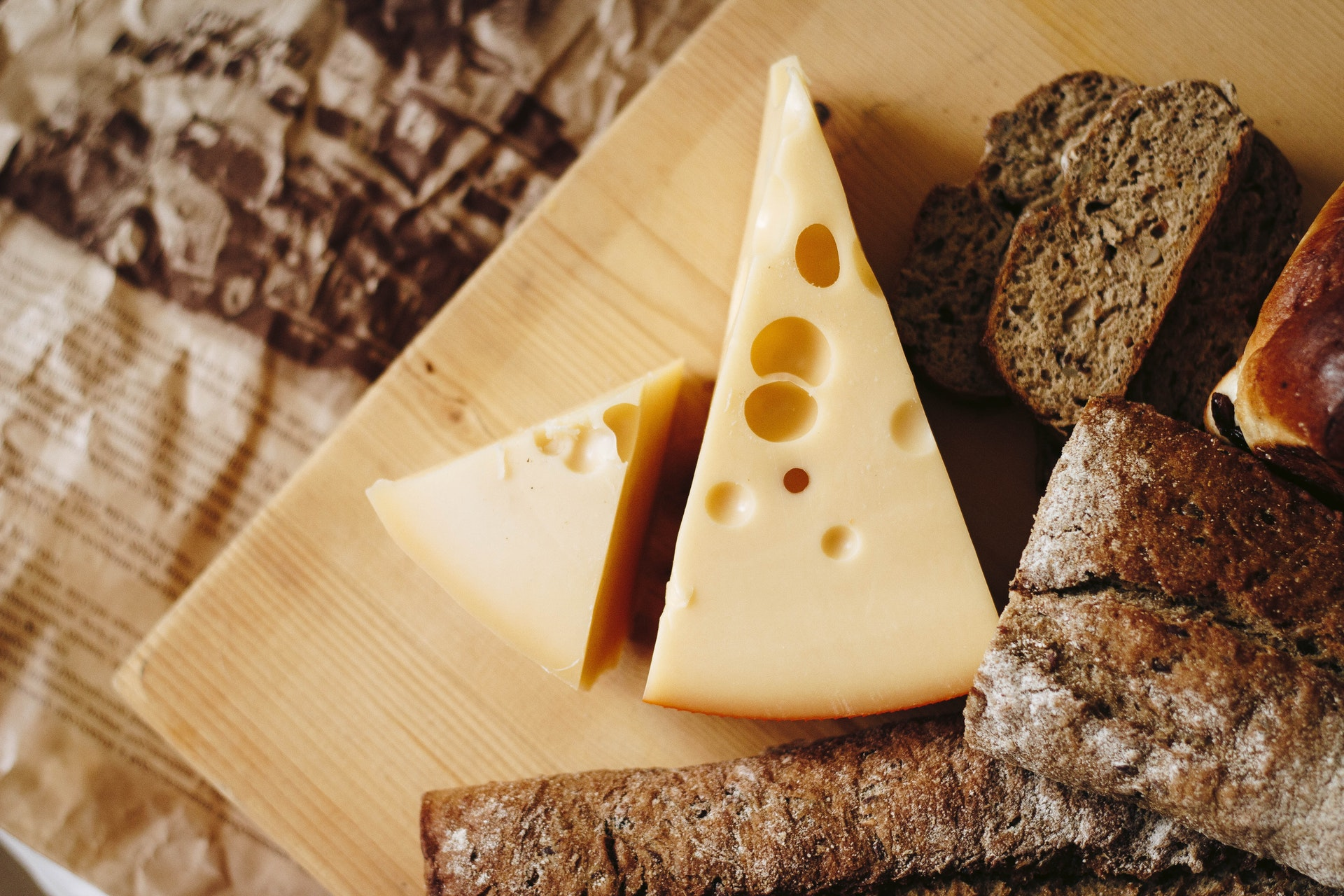 What animal does cheese come from