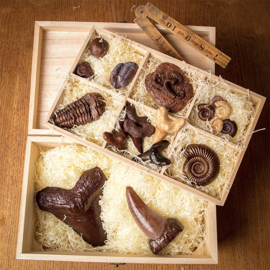 Edible Museum chocolate box