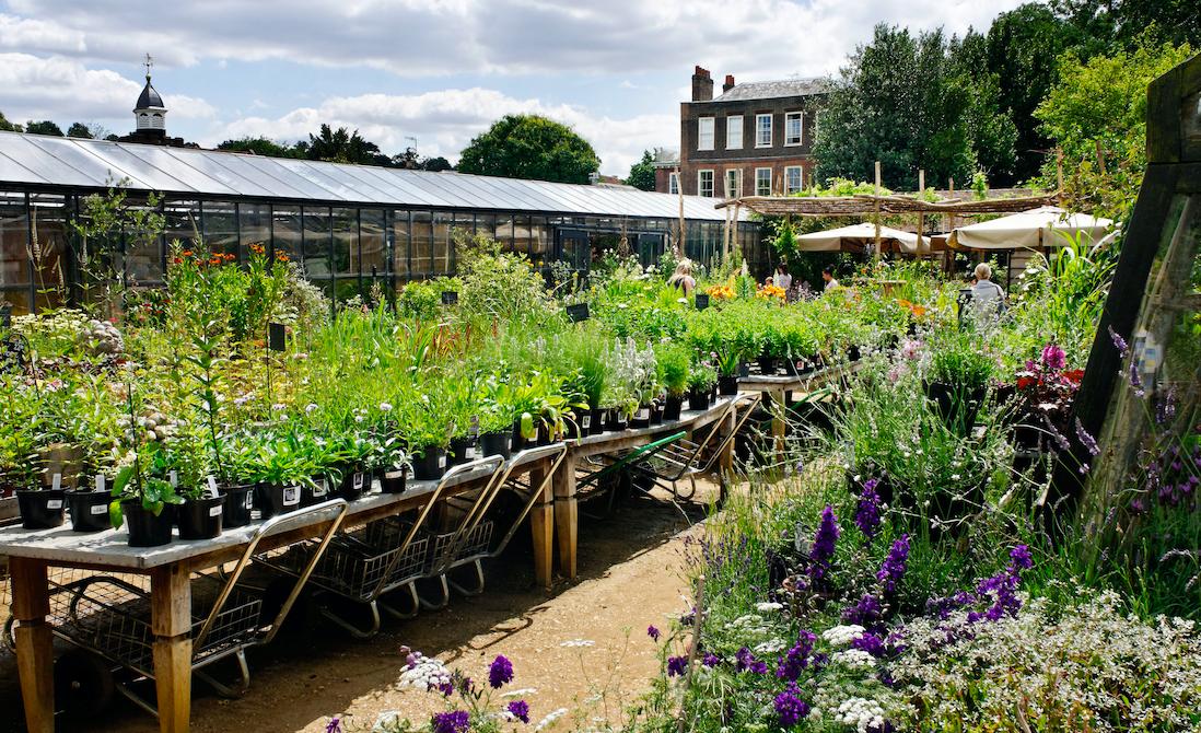 Petersham Nurseries best outdoor restaurants UK