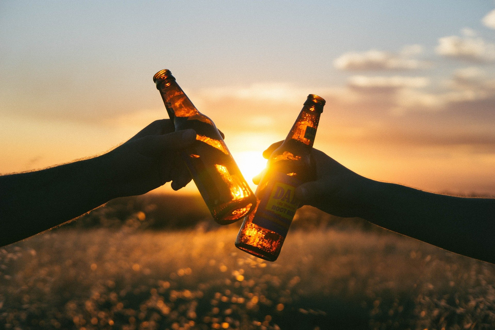 beers in a field